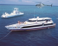 Cairns Super Saver: Great Barrier Reef Cruise plus Kuranda Scenic Railway plus Cape Tribulation Day Trip Photos