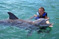 Cancun Dolphin Encounter Program Photos