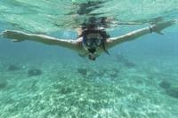 Cancun Snorkel Safari from Puerto Aventuras Photos