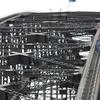 Sydney Shore Excursion: Sydney BridgeClimb