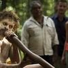 Daintree Rainforest and Mossman Gorge Eco-Tour