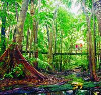 Darwin City Tour, Territory Wildlife Park and Eco-Cruise  Photos
