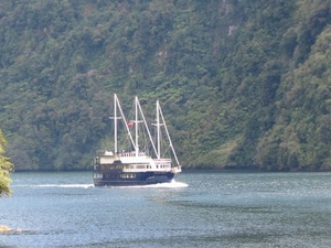 Doubtful Sound Wilderness Cruise from Te Anau Photos
