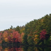 Fall Foliage Sightseeing Tour from Boston