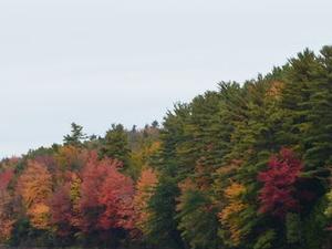 Fall Foliage Sightseeing Tour from Boston Photos