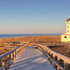 Fall on Cape Cod: Day Trip from Boston with Sightseeing Cruise