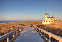 Fall on Cape Cod: Day Trip from Boston with Sightseeing Cruise Photos