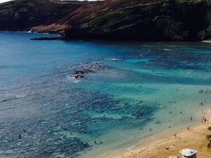 Oahu Grand Circle Island Day Tour with Dole Plantation Photos