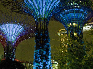 Singapore Night Sightseeing Tour with Gardens by the Bay, Bumboat Ride and Bugis Street Photos