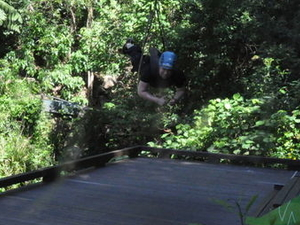 Cairns Minjin Jungle Swing Photos