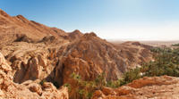 Indian Canyons by Jeep plus Hiking Tour from Palm Springs Photos