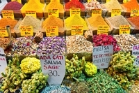 Istanbul Street Food Tour and Picnic Photos