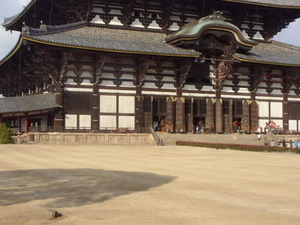 Kyoto and Nara 2-Day or 3-Day Rail Tour by Bullet Train from Tokyo Photos