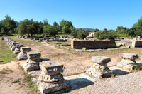 Katakolon Shore Excursion: Private Tour of Ancient Olympia, Archeological Site and Archeological Museum Photos