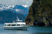 Kenai Fjords National Park Cruise from Seward Photos
