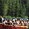 Ketchikan Rainforest Canoe and Nature Walk