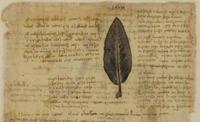 Leonardo da Vinci's Codex Atlanticus Admission in Milan Photos