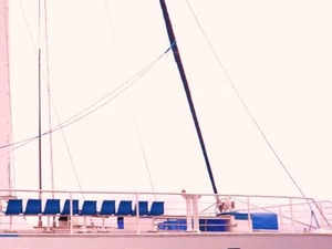 Low Isles Great Barrier Reef Sailing Cruise from Port Douglas Photos