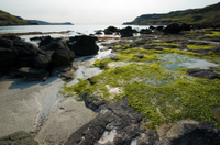 Magical Mull, Iona and the West Highlands Isles Photos