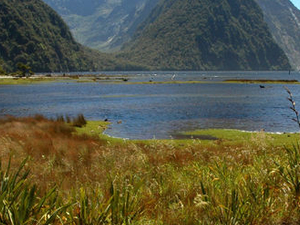 Milford Sound Mariner Overnight Cruise from Queenstown Photos