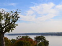 Mt Vernon Independent Bike Tour with Optional Potomac River Cruise