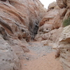 Valley of Fire Luxury Tour Trekker Excursion
