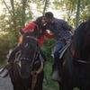 Niagara Falls Sunset Horseback Riding