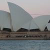 Sydney Harbour Hop-on Hop-off Cruise