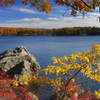 Overnight Fall Foliage Tour from New York City