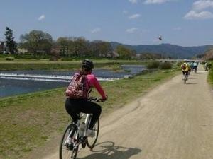 Kyoto Small-Group Bike Tour Photos