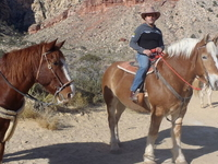 Old Spanish Trail Horseback Ride with Lunch
