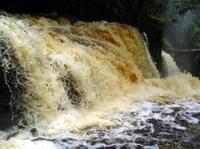 Presidente Figueiredo Waterfalls Day Trip from Manaus Photos