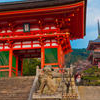 Private Scholar-led Kyoto Walking Tour: Shintoism and Buddhism in Japan