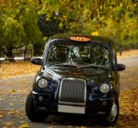 Private Tour: Customized Black Cab Tour of London Photos