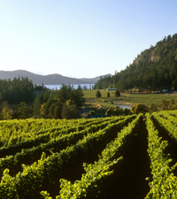 Private Tour: 3-Day Wine-Tasting Tour Through Victoria and the Gulf Islands Photos