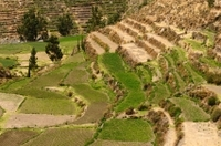 Private Tour: Arequipa Countryside Tour Including Sabandia Mill and Founder's Mansion Photos