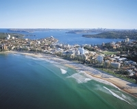 Private Tour: Ku-ring-gai, Northern Beaches and Sydney Sightseeing  Photos