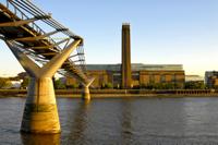 Private Tour: Tate Britain and Tate Modern Photos