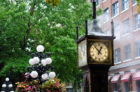 Private Tour: Vancouver City Sightseeing  Photos