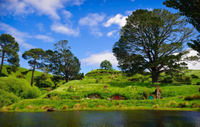 Private Tour: Waitomo Caves and The Lord of the Rings Hobbiton Movie Set Tour from Auckland Photos