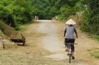 Quang Dien Village Bike Tour Including Sampan Cruise Photos