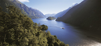 Queenstown Super Saver: Doubtful Sound Cruise plus Walter Peak High Country Farm Tour Photos