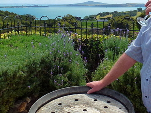 Food and Wine-Tasting Tour of Waiheke Island from Auckland Photos