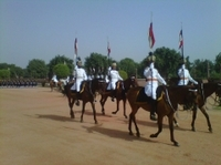 Rashtrapati Bhavan Changing of Guard and Museum Entry Independent Tour Photos