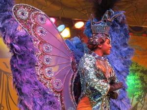 Plataforma Samba Show in Rio de Janeiro Photos