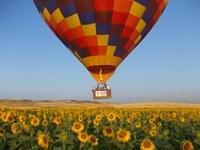 Seville Hot-Air Balloon Ride Photos