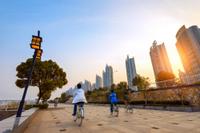 Shanghai Highlights Bike Tour Including the Bund and Xintiandi Photos