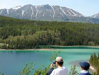 Skagway Shore Excursion: Full-Day Tour of the Yukon  Photos