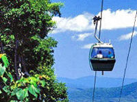 Skyrail Rainforest Cableway Day Trip from Port Douglas Photos