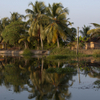 Small-Group Cultural Tour of Kerala Backwaters in Kochi